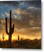 A Serene Sunset In The Sonoran Desert  Metal Print
