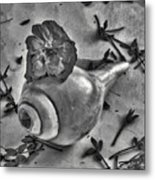 A Shell For Music Metal Print