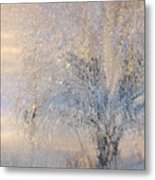 A Shimmering Light Metal Print