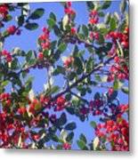 A Sky Full Of Holly Metal Print