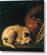 A Sleeping Dog With Terracotta Pot 1650 Metal Print