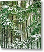 A Snowy Day Metal Print
