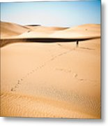 A Solitary Walk Metal Print