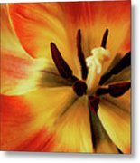 A Song From The Heart Metal Print