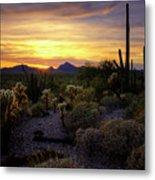 A Southern Arizona Sunset  Metal Print