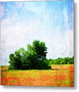 A Spring Day In Texas Metal Print