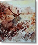 A Stag Metal Print