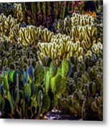A Sticky Situation Metal Print