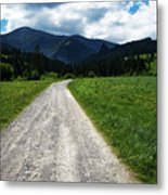 A Stone Path Through The Countryside Into The Forest Metal Print