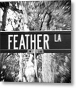 Fe - A Street Sign Named Feather Metal Print