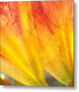 A Study In Red And Yellow Metal Print