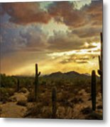 A Summer Evening In The Sonoran  Metal Print