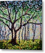 A Summer Forest Metal Print