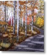 A Sunny Autumn Day Metal Print
