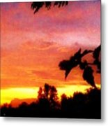 A Sunset With A Different Mood Metal Print