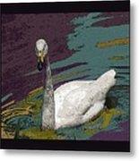 A Swan Me A Swan Metal Print