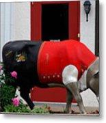 A Swiss Cow In New Glarus Wi Metal Print