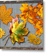 A Taste Of Fall Metal Print