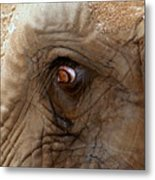 A Tear Escapes Metal Print