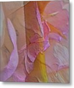 A Thorn's Beauty Metal Print