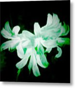 A Touch Of Green On The Lilies Metal Print