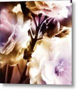 A Touch Of Violet Metal Print