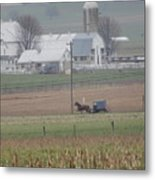 A Tranquil Spring Pause Metal Print