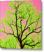 A Tree Grows In Vegas Metal Print