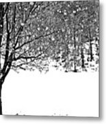 A Tree In Snowy Winter Metal Print