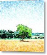 A Tree Near Siena Metal Print