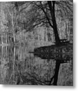 A Tree Of A Different Color Metal Print
