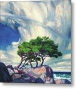 A Tree On The Seashore Reef Metal Print