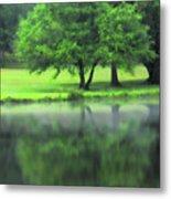 A Tree Reflected Metal Print