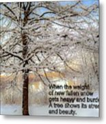 A Tree Shows Its Strength And Beauty Metal Print