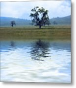 A Trees  Reflection Metal Print