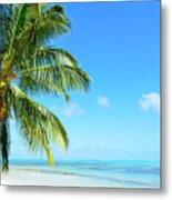 A Tropical Palm Tree Beach Metal Print