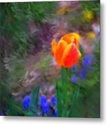 A Tulip Stands Alone Metal Print