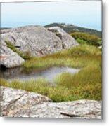 A Vernal Pool Atop A Subalpine Granite Balds Metal Print