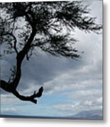 A View From Maui Metal Print