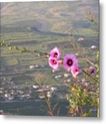 A View From Mt. Arbel Metal Print