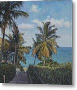 A View In The Virgin Islands Metal Print