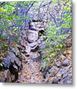 A View In The Woods Metal Print