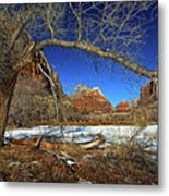 A View In Zion Metal Print