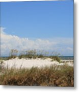 A View Of The Dunes Metal Print