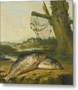 A View On The River Derwent At Belper Derbyshire With A Salmon And A Grayling On The Bank Metal Print