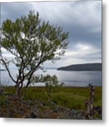 A View To The Arctic Sea Metal Print