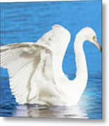 A Vision In White Metal Print