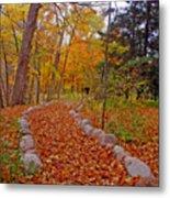 A Walk Along Natures Path Metal Print