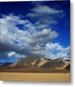 A Walk In The Desert Metal Print