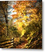 The Lighted Path Metal Print